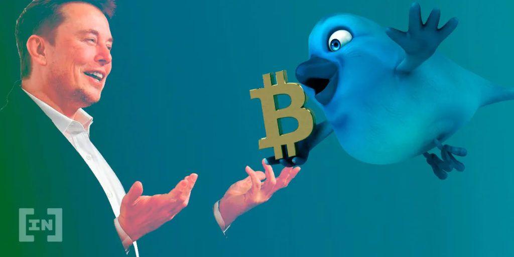 influenciadores Twitter preços criptomoedas